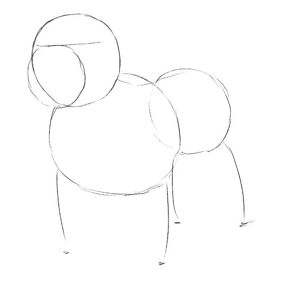 1-how-to-draw-a-bulldog.jpg