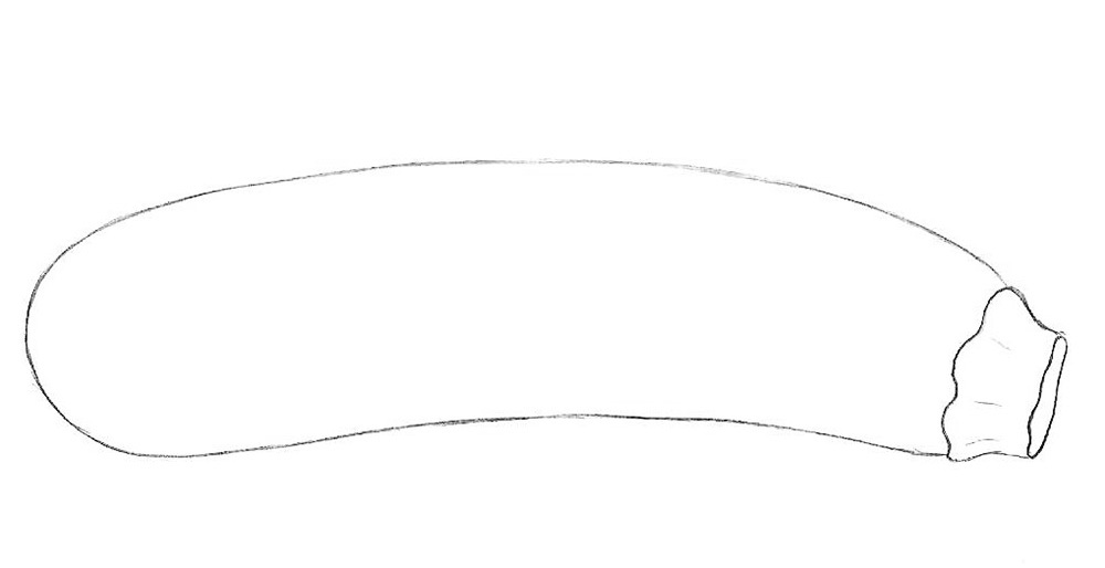 3-How-to-draw-a-zucchini-step-by-step.jpg
